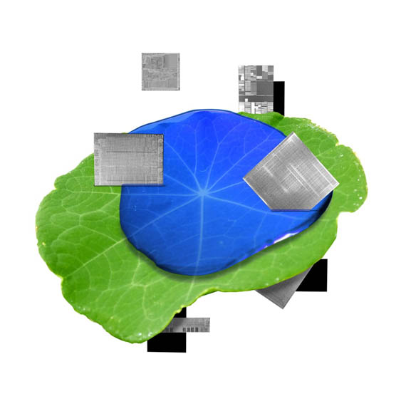 Materiales-productos-planeta-sostenible_IBM-5-in-5