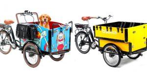 bunch-ebikes-modelos-preschool-bark