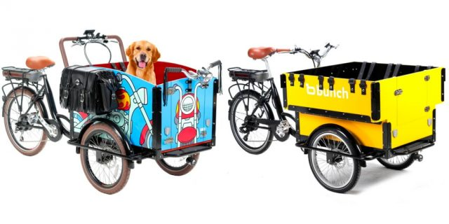 bunch-ebikes-modelos-preschool-bark