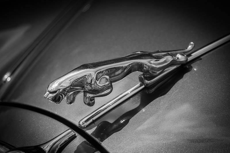 jaguar-insignia-coches