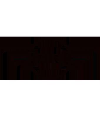logo de Mini
